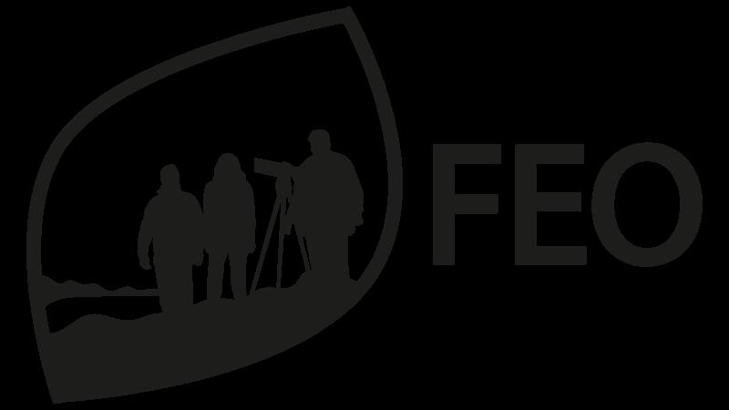 FEO logo
